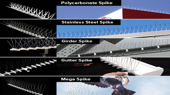 Bird B Gone Offers Widest Variety of Bird Spikes - Made in the USA!