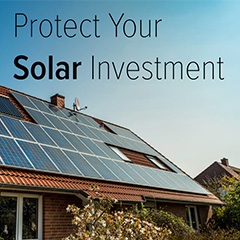 Don't let birds ruin your solar panel investment