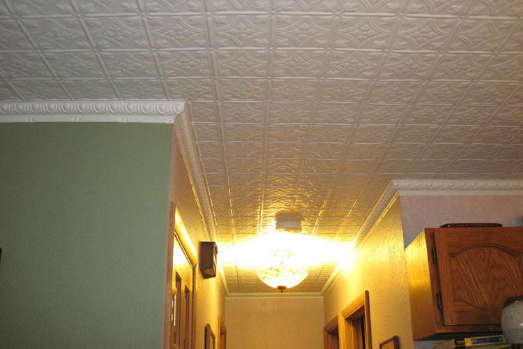Drop-In Decorative Ceiling Tiles