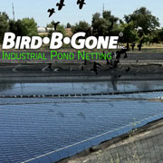 Industrial Pond Netting from Bird-B-Gone