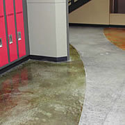 Innovative Concrete Use in Versatile School Floors