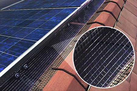 aecinfocom news keep birds off solar panel arrays