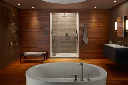 AECinfo.com News: Luxury Shower Wall Panels Accessories and Storage ...