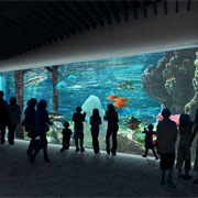 PENETRON ADMIX Helps Launch New Tacoma Aquarium