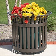 Planters from Thomas Steele