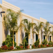 Ways To Make Commercial Landscaping Stand Out