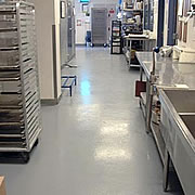 What are the Flooring Options for a Food Facility Washdown Area